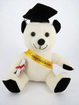 Calico Graduation Bear 20cm 6piece