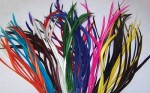 Biot Feathers - All colours